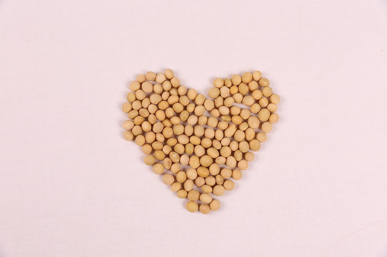 Zamienniki białka dla wegan i wegetarian. Nasiona strączkowe: nasiona grochu